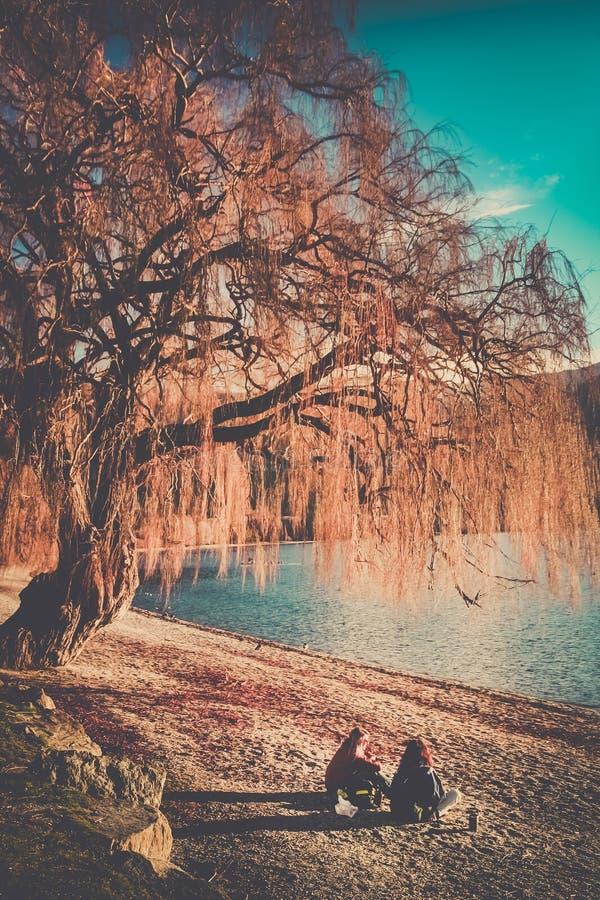 休息由湖 图库摄影