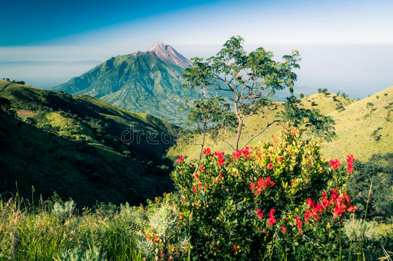 休眠stratovolcano照片  库存图片
