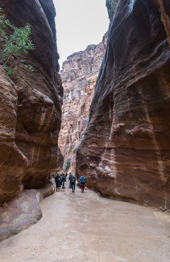 众多的游人沿峡谷导致Petra的- Nabatean王国的资本走在旱谷芭蕉科市在约旦 免版税库存照片