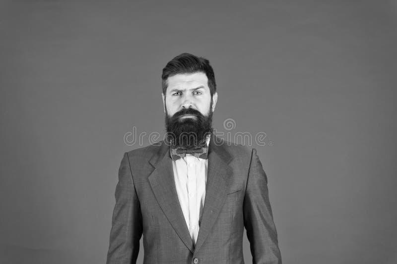 优等的样式 人有胡子的行家穿经典衣服服装 正式成套装备 好照料衣服 优美和男性 免版税库存图片