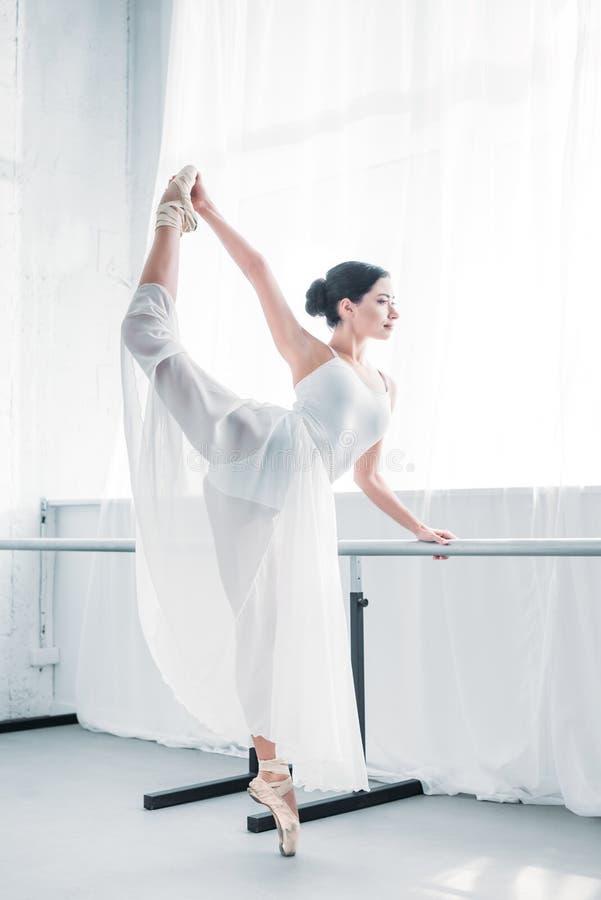 优美的灵活的年轻芭蕾舞女演员实践的芭蕾侧视图  库存图片