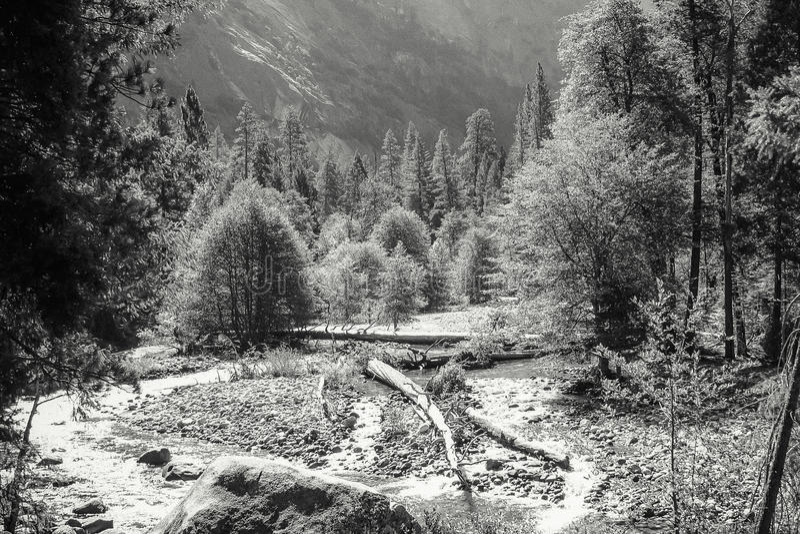 优胜美地国家公园谷地板  库存图片