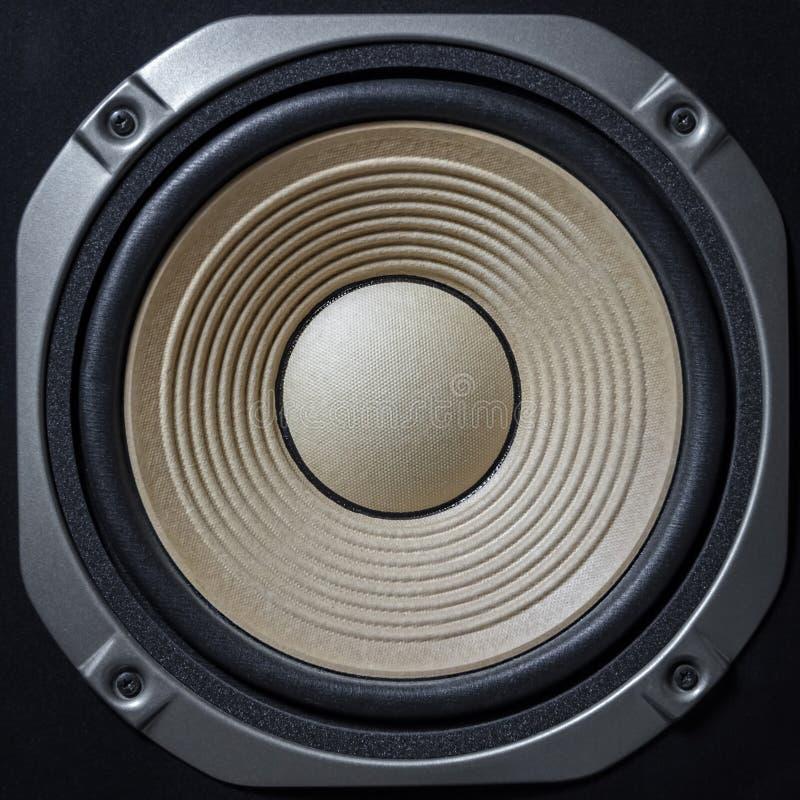 优质扩音器 高保真伴音系统在录音演播室的商店 专业高保真内阁报告人箱子 茄子 免版税库存照片