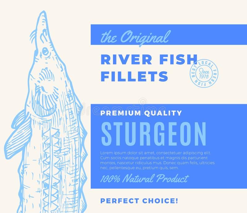 优质质量鱼片 抽象传染媒介鱼成套设计或标签 现代印刷术和手拉的鲟鱼 库存例证