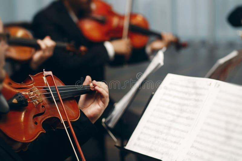 优雅的弦乐四重奏在餐厅的婚宴上表演,帅哥穿着西装在剧院拉小提琴和大提琴 库存照片