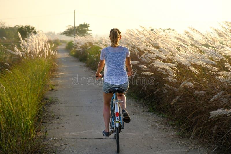 会安市/越南,12/11/2017:循环通过领域的旅游妇女在日落期间在会安市,越南 免版税图库摄影