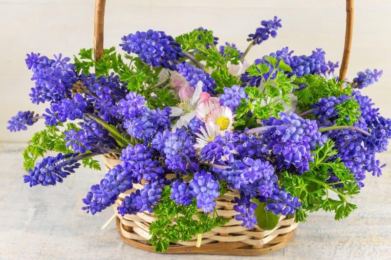 会开蓝色钟形花的草开花在柳条筐的花束 库存照片