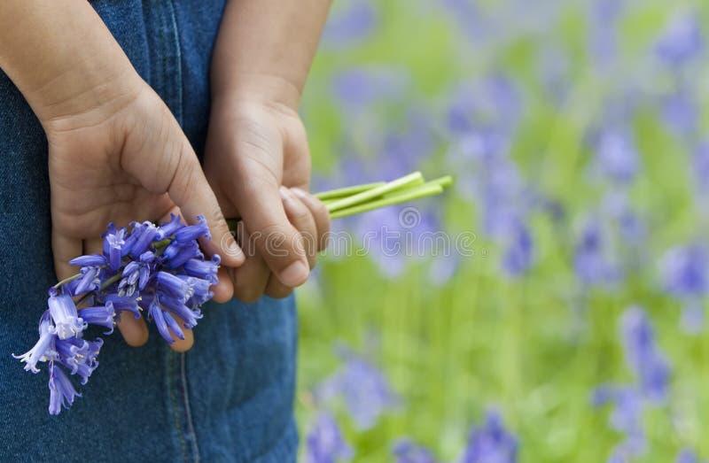会开蓝色钟形花的草束女孩一点 免版税库存图片