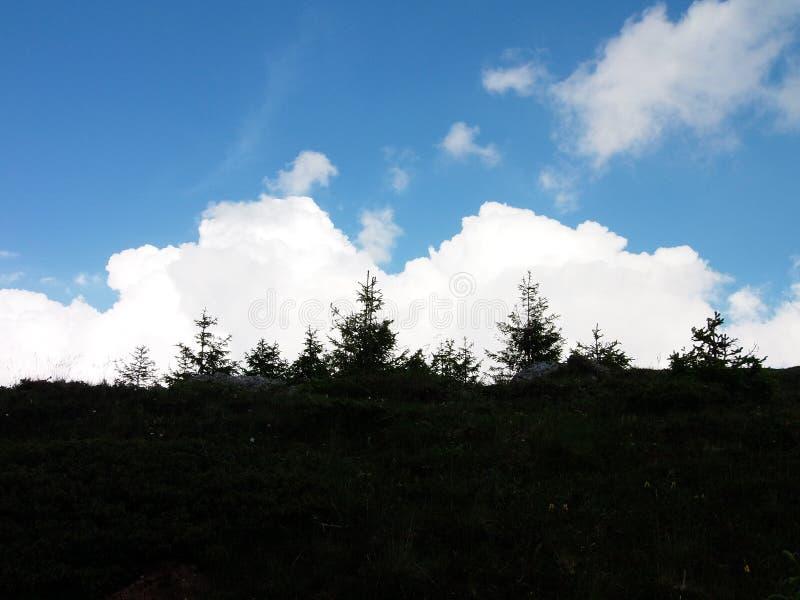 伟大的天空 库存照片