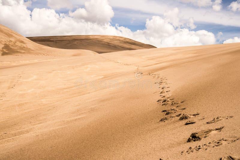 伟大的沙丘科罗拉多 库存照片