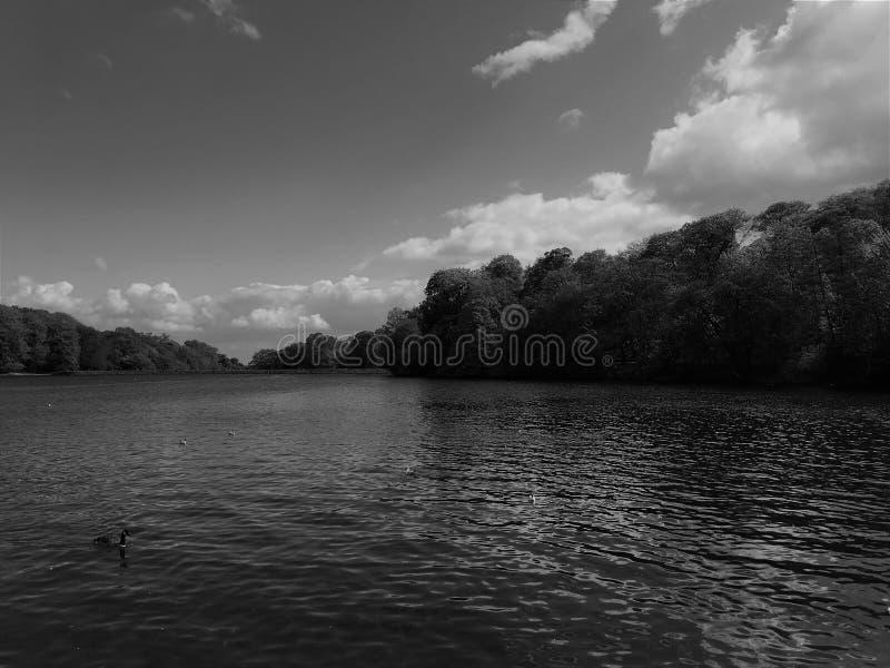 伟大的湖 免版税图库摄影