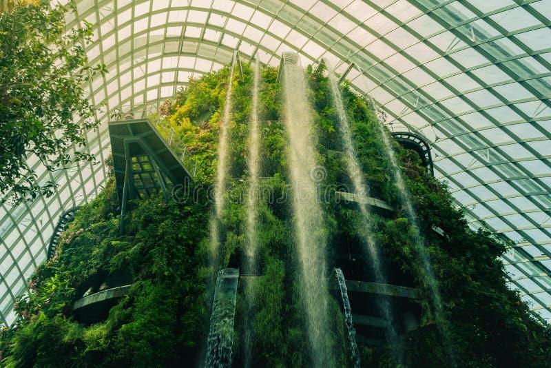 伟大的瀑布在新加坡云彩森林里 免版税库存图片