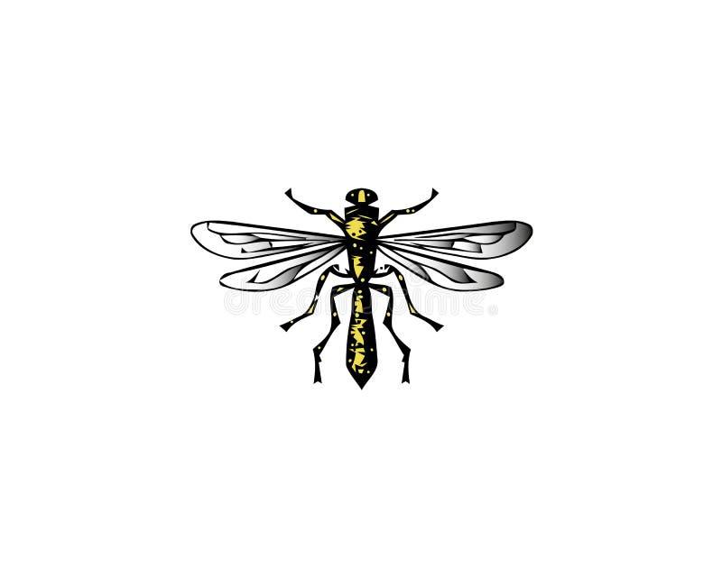 伟大的蜻蜓 传染媒介蜻蜓 蜻蜓下蛋在水之下 昆虫学 皇族释放例证