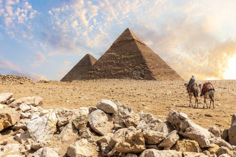 伟大的金字塔在吉萨棉沙漠有附近流浪者的,开罗,埃及 免版税库存照片