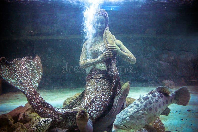 从传奇的泰国生物雕象神奇 库存照片