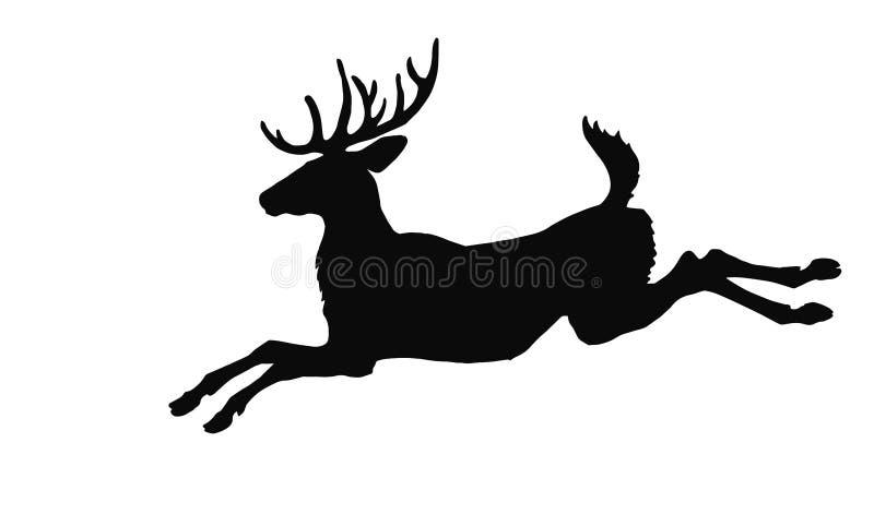 传染媒介一头跳跃的孤独的有角的森林鹿的一黑silh ouette的被隔绝的图象 向量例证
