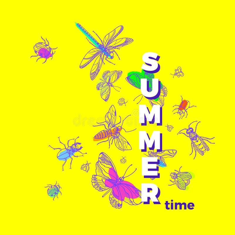 传染媒介五颜六色的昆虫 夏天卡片的自然模板 向量例证