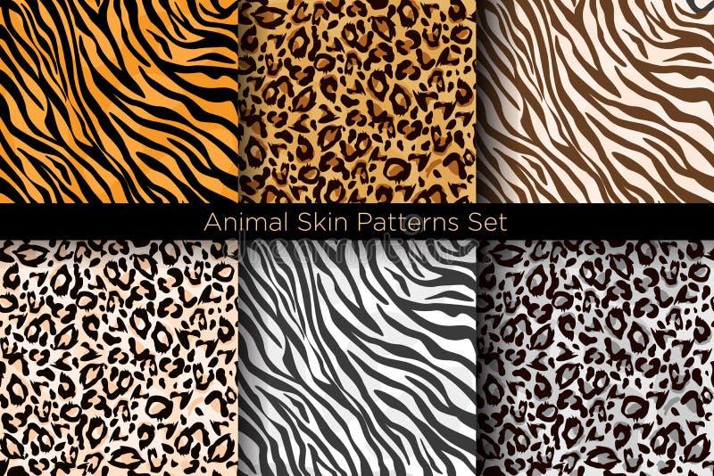 传染媒介例证套动物无缝的印刷品 老虎和豹子在不同颜色的样式汇集在舱内甲板 向量例证