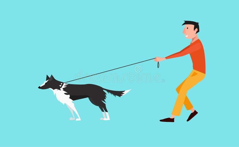 传染媒介例证:年轻人步行狗黑白博德牧羊犬 在皮带的狗拉扯 向量例证
