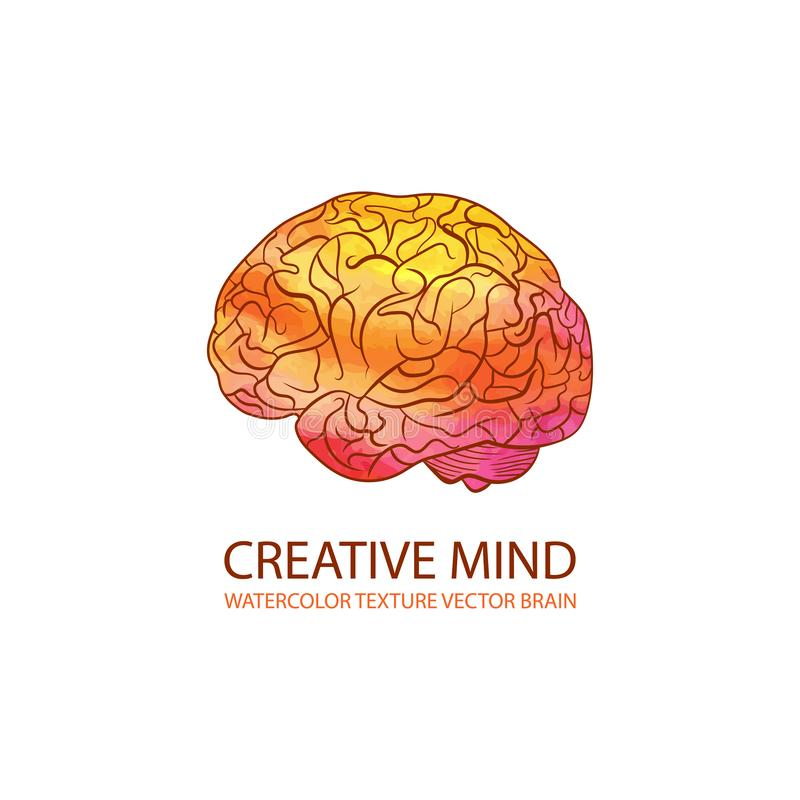 传染媒介创造性的头脑例证,水彩梯度五颜六色的脑子,商标模板 向量例证