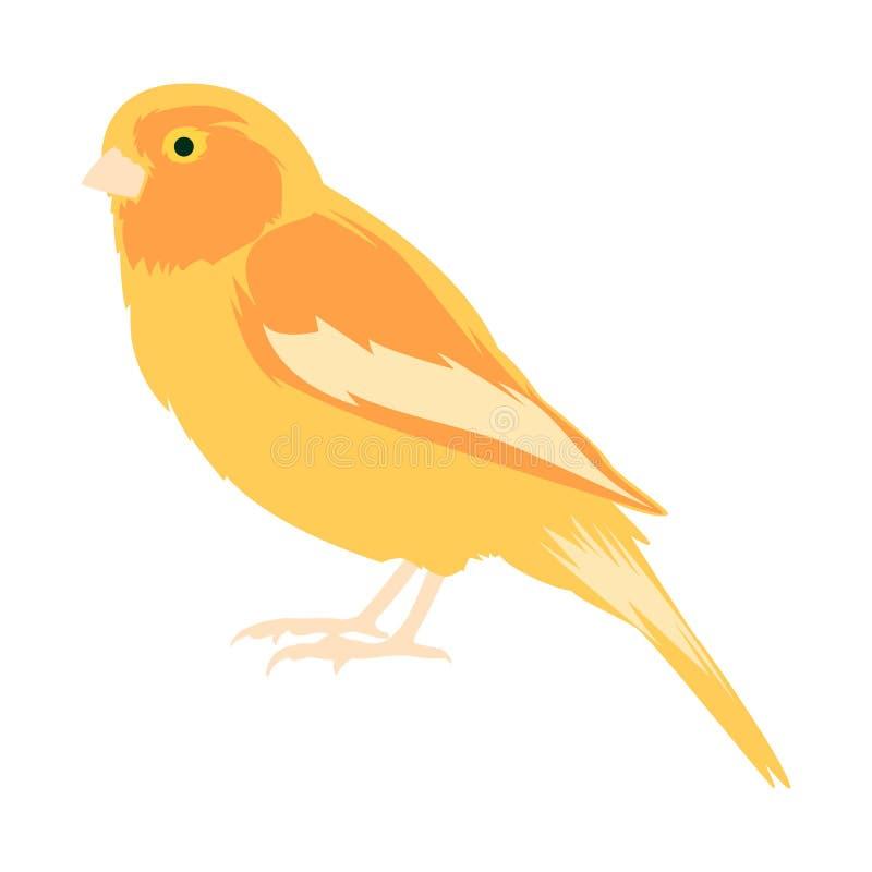 E 一只黄色金丝雀的传染媒介例证 向量例证