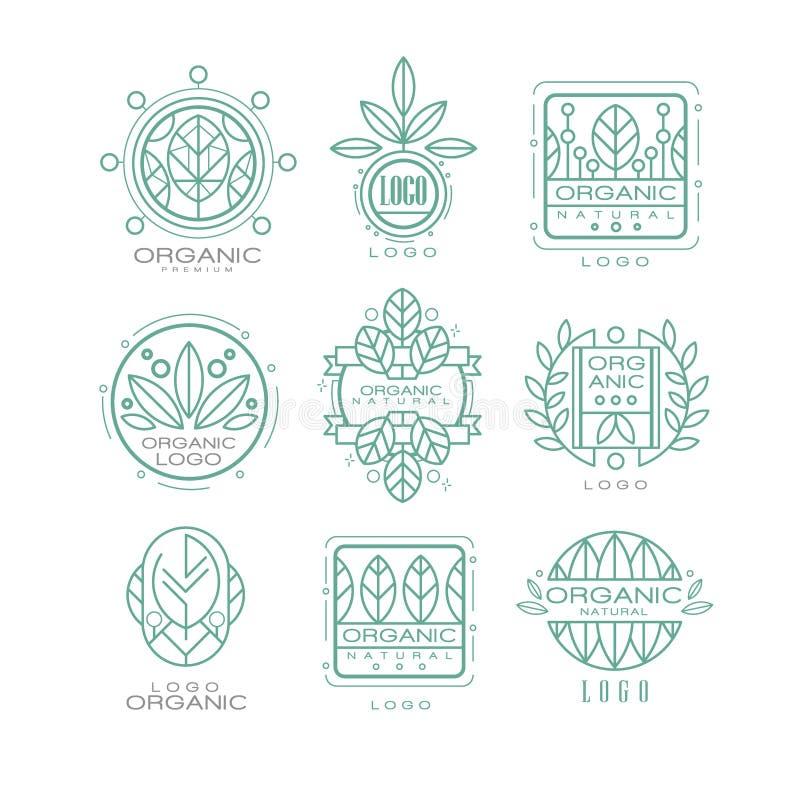 传染媒介套原始的有机商标 与抽象叶子的线性象征自然化妆用品, eco食品的或者 向量例证