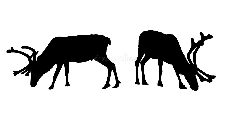 传染媒介套吃草与垫铁的驯鹿剪影 库存例证