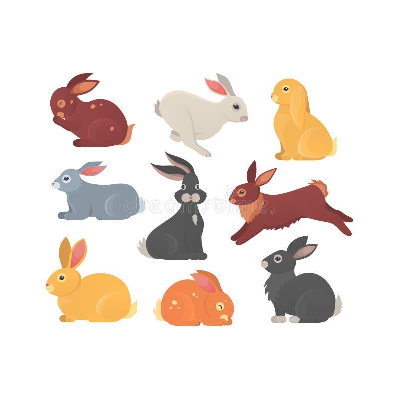 传染媒介套在动画片样式的逗人喜爱的兔子 兔宝宝宠物剪影用不同的姿势 野兔和兔子五颜六色的动物 向量例证