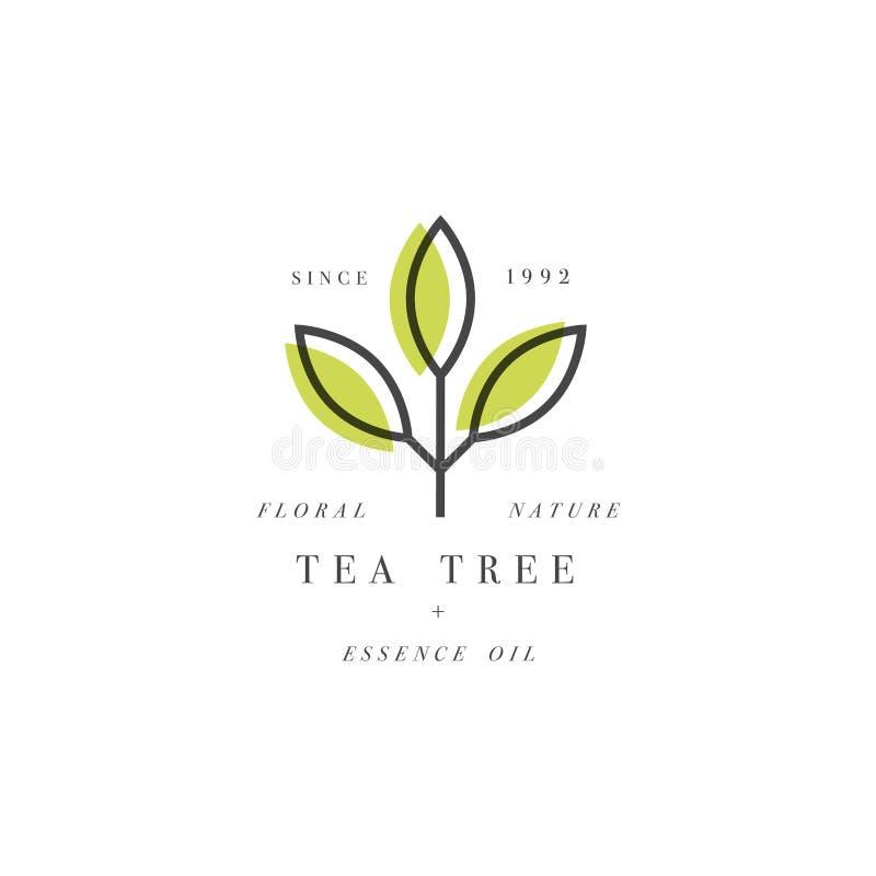 传染媒介套成套设计模板和象征在线性样式-秀丽和化妆用品油-茶树 向量例证