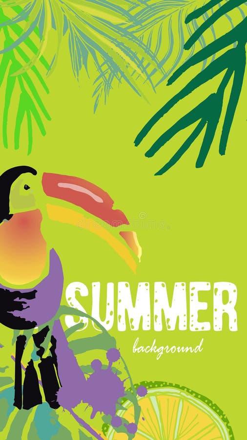 传染媒介套社会媒介故事模板 夏天明亮的热带背景 向量例证