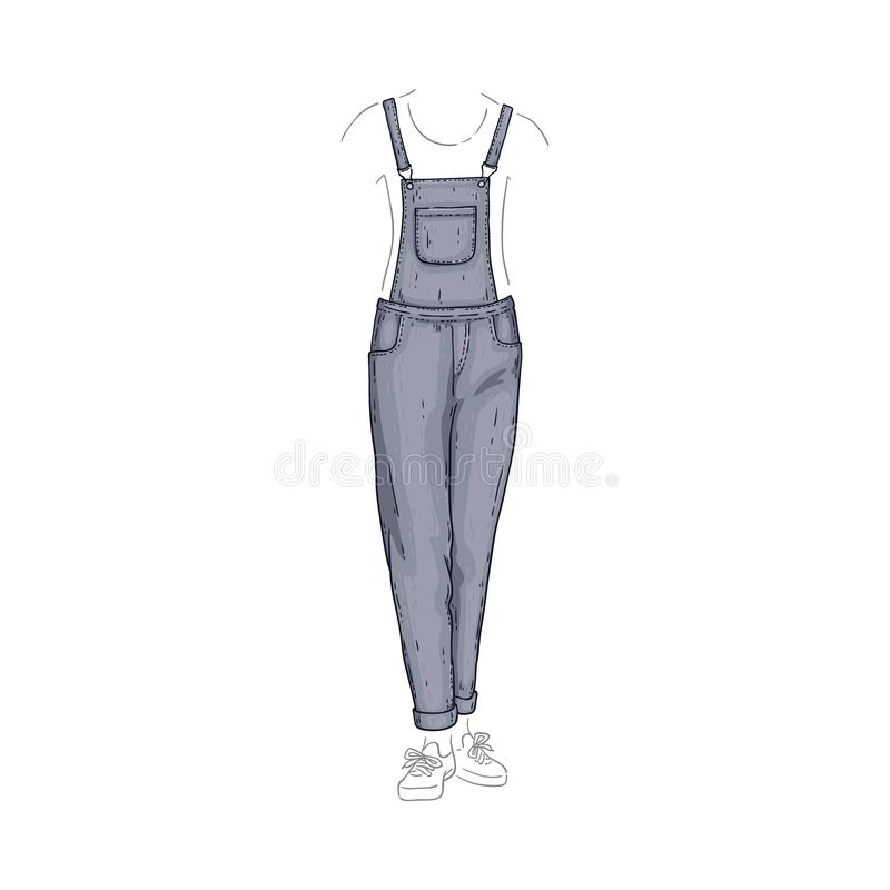 传染媒介总体称呼牛仔裤,女性牛仔布裤子 库存例证