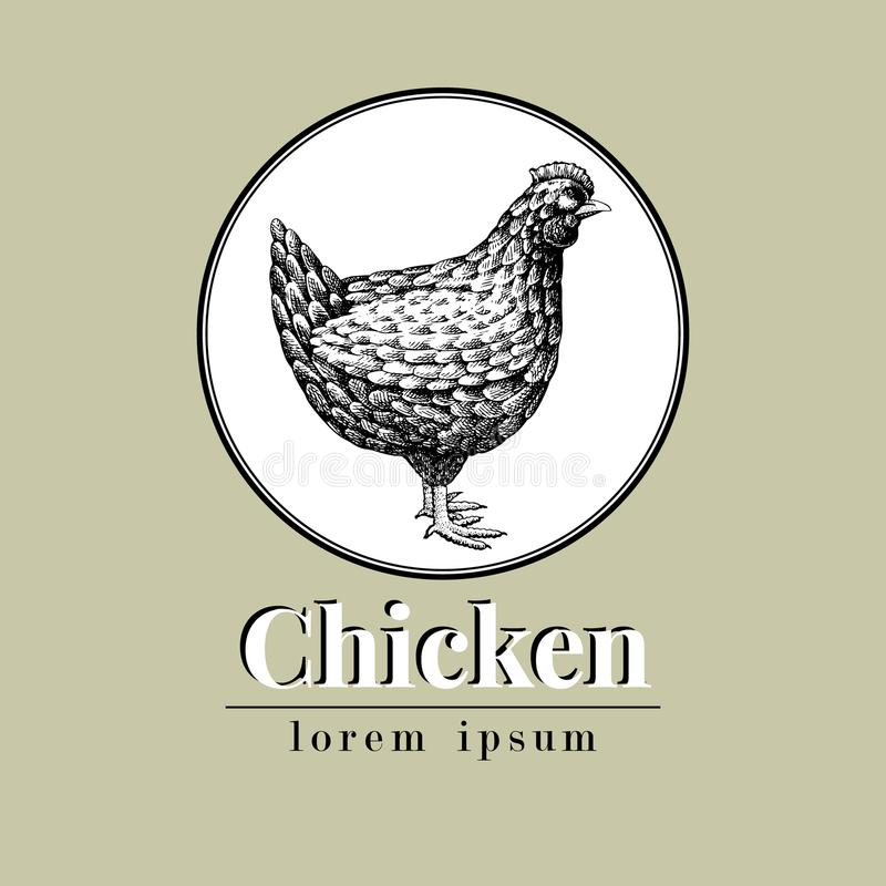 传染媒介手拉的鸡例证 减速火箭的板刻样式 剪影牲口图画 母鸡商标模板 库存例证