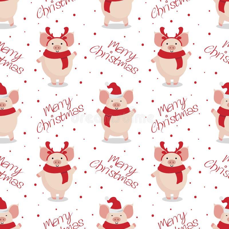 传染媒介无缝的圣诞节样式 在白色背景的逗人喜爱的动画片猪 皇族释放例证