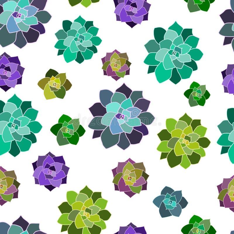 传染媒介无缝的样式,纹理,与多汁植物的纸有透明背景 时髦元素 库存例证