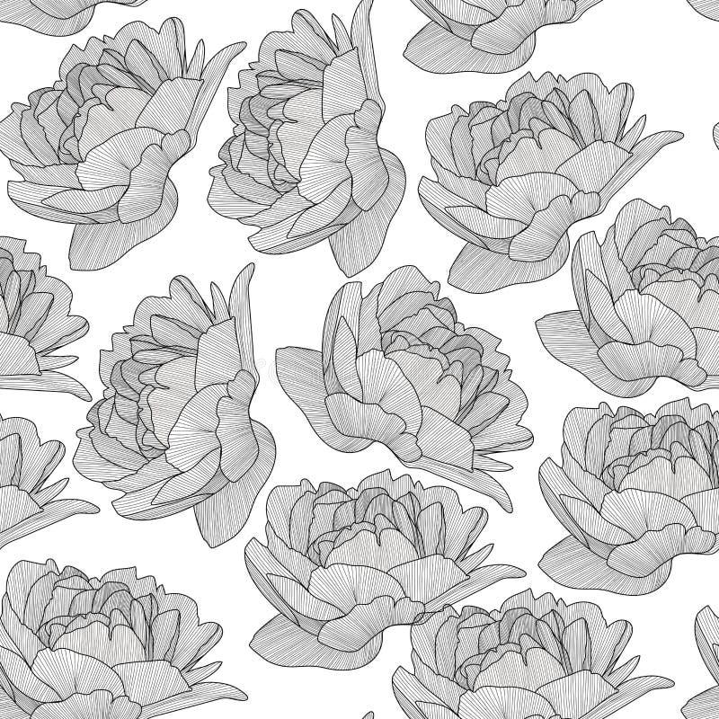 传染媒介无缝的样式,纹理,与手拉的花的印刷品在透明背景 皇族释放例证