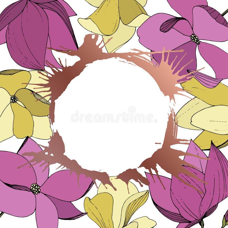 传染媒介木兰花卉植物的花 紫色和黄色被刻记的墨水艺术 E 向量例证