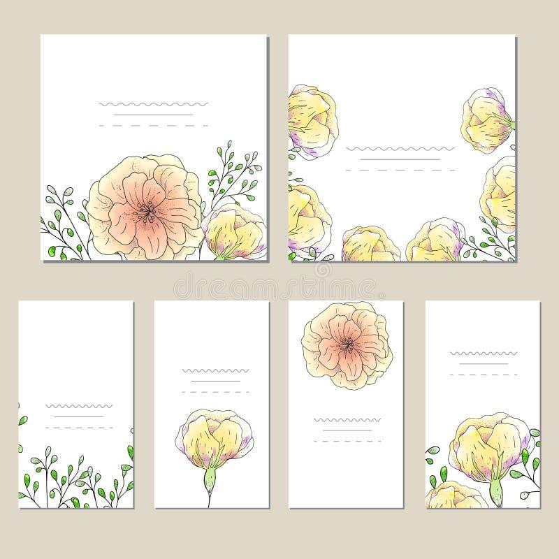 传染媒介模板标签的汇集、参观卡片、方形的贺卡和横幅与家庭植物,野花和草本 Busin 库存照片