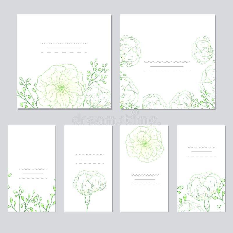 传染媒介模板标签的汇集、参观卡片、方形的贺卡和横幅与家庭植物,野花和草本 Busin 库存图片