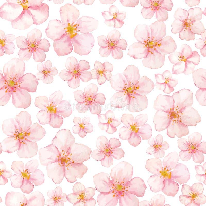 传染媒介水彩佐仓在白色背景的花纹花样 汇集佐仓花 向量例证