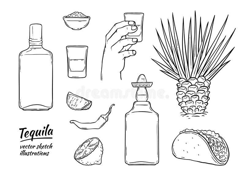 传染媒介玻璃龙舌兰酒瓶剪影象隔绝了 库存例证