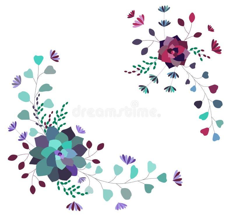 传染媒介花卉构成,集合,汇集 时髦多汁植物和叶子 向量例证