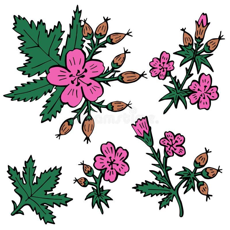 传染媒介花,隔绝在白色背景 装饰工厂 库存例证