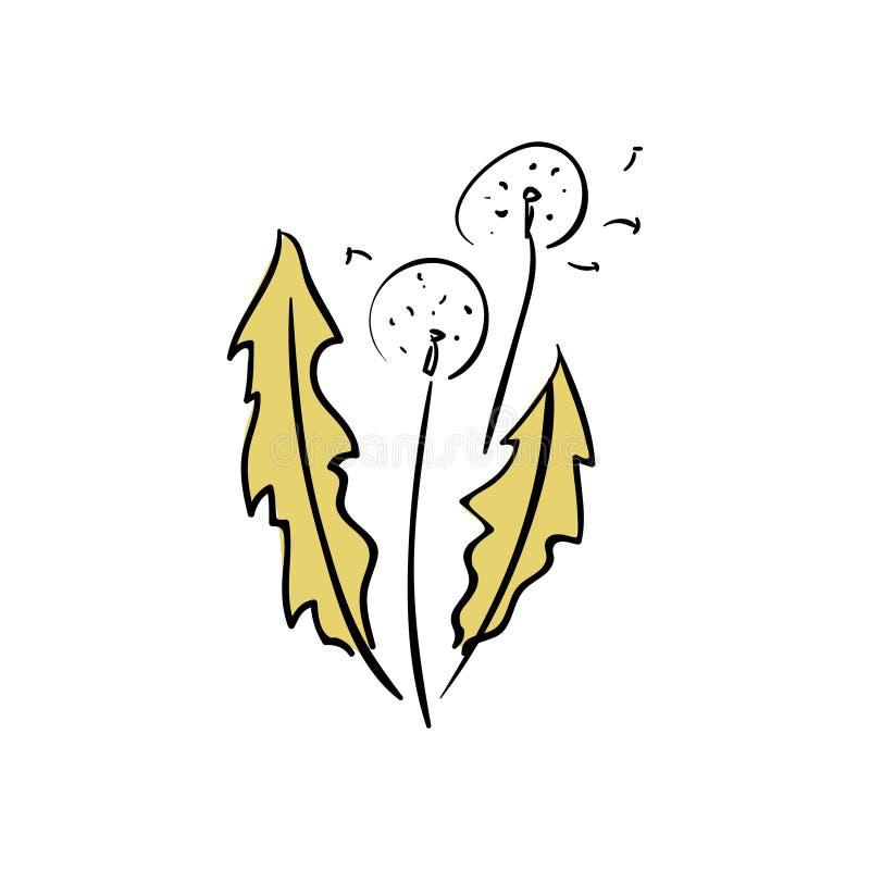 传染媒介蒲公英吹的剪影 飞行的打击蒲公英发芽在白色的黑室外装饰 皇族释放例证