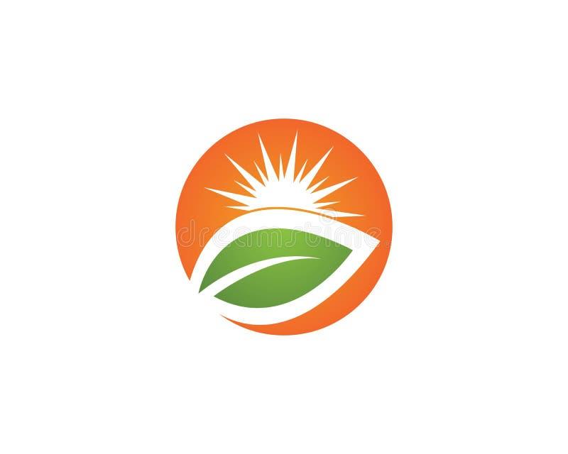 传染媒介象在天际的商标模板太阳 库存例证