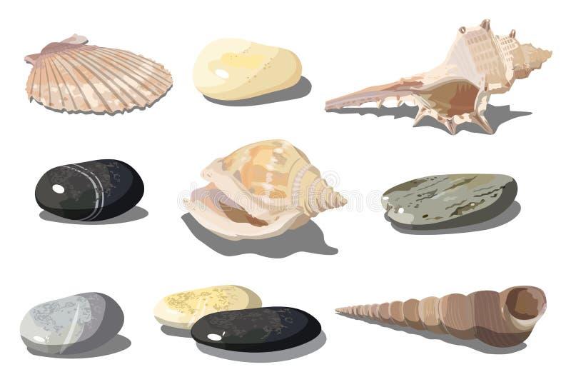 传染媒介贝壳和海小卵石 向量例证