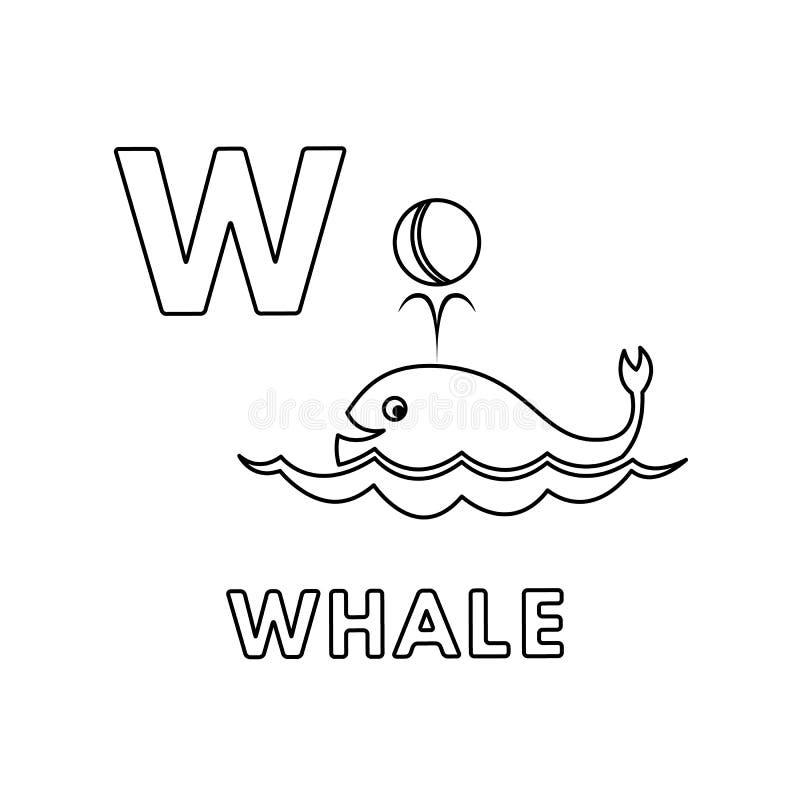 传染媒介逗人喜爱的动画片动物字母表 鲸鱼着色页 向量例证