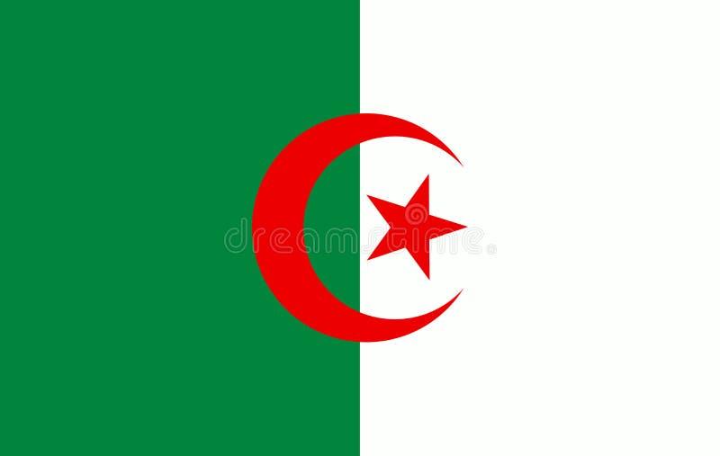 传染媒介阿尔及利亚旗子,阿尔及利亚旗子例证,阿尔及利亚旗子图片 库存例证