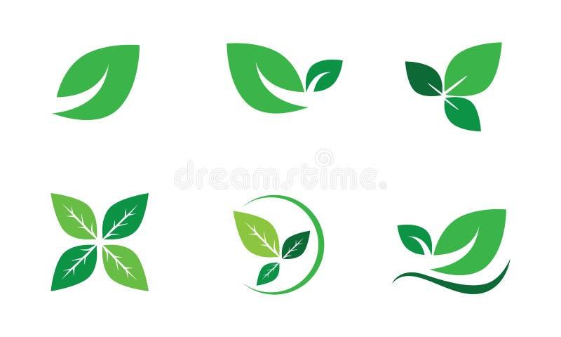 传染媒介集合绿色叶子,生态,叶子,自然 向量例证