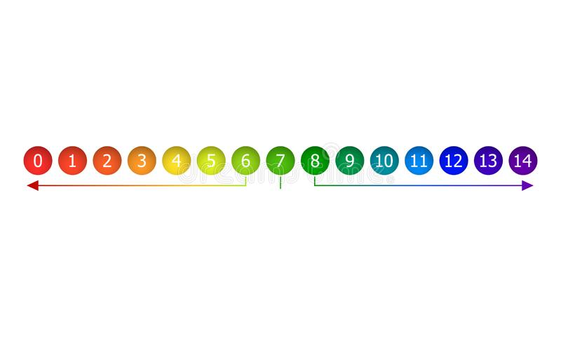传染媒介Infographic设计元素,与数字的五颜六色的梯度圈子隔绝,与Arows 向量例证