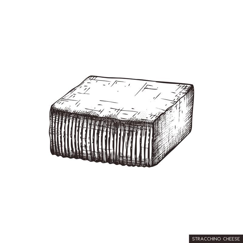 传染媒介Stracchino剪影 手拉的意大利牛奶乳酪例证 在白色背景的葡萄酒传统食物图画 库存例证